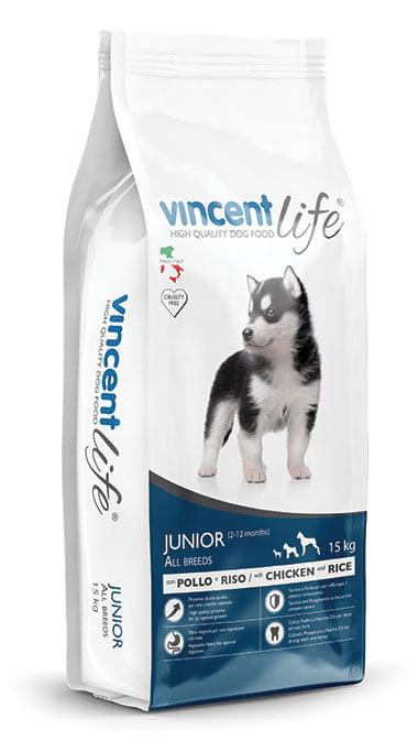 Vincent Life Junior sunu bariba