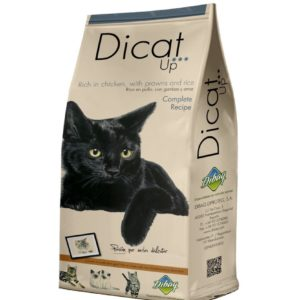 DIBAQ DICAT UP COMPLETE RECIPE